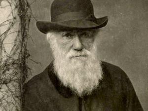 Darwin e l'evoluzionismo