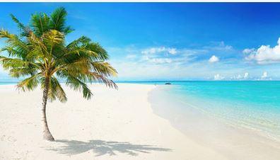 Fährt ihr nächstes Jahr ans Meer?