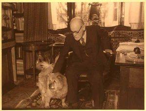 Foto Freud cane