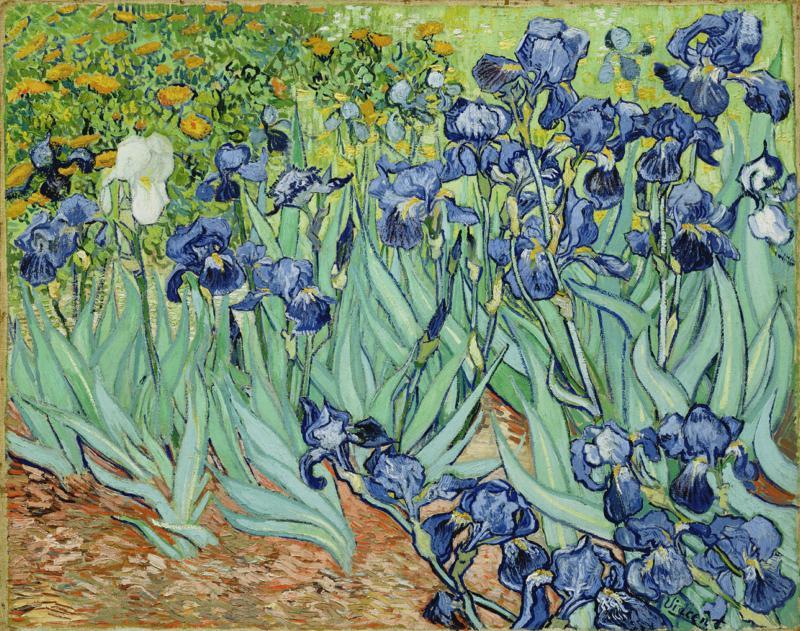 Van Gogh: Iris, 1889